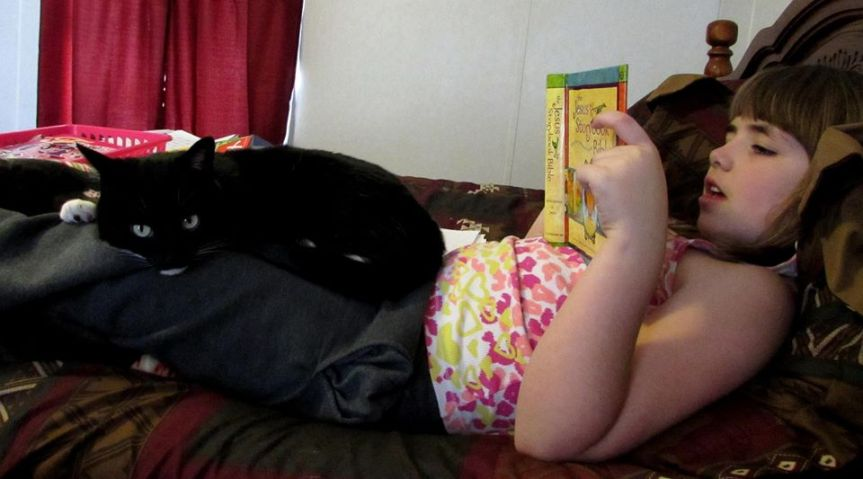 Who needs to hear the Bible read aloud more than the cat?