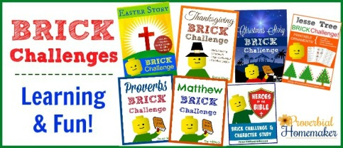 BRICK-Challenges-at-Proverbial-Homemaker