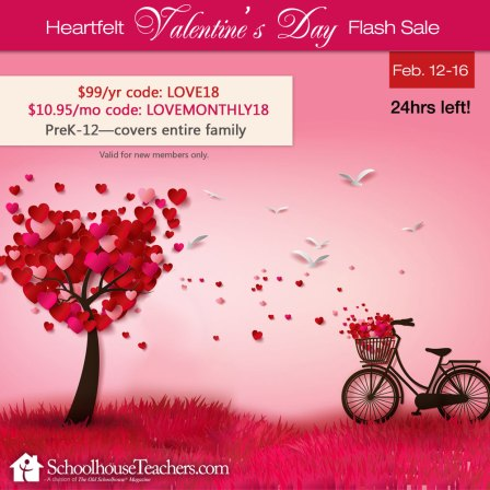 st-valentines-day-flash-sale-24hrs-meme