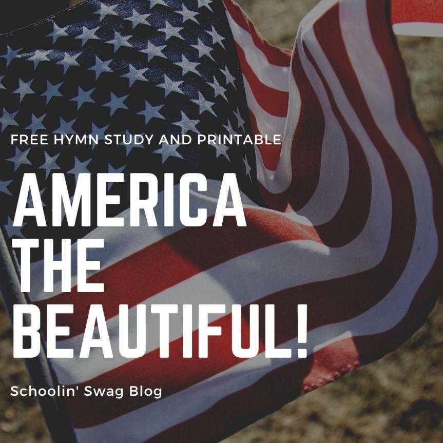 america the beautiful graphic